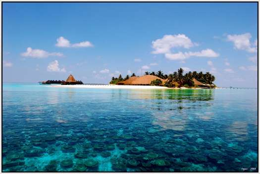 The-Maldives-33