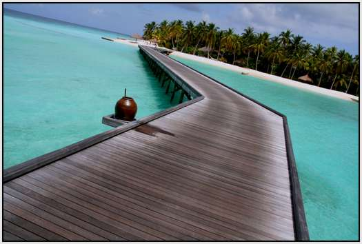 The-Maldives-38