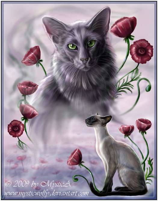 Cute-Cat-Artworks-22