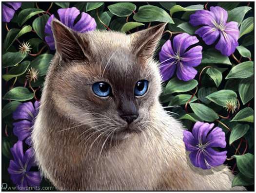 Cute-Cat-Artworks-30