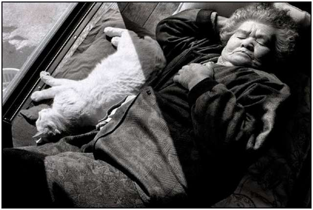 Photographs of 88-year-old Grandmother and Her Cat