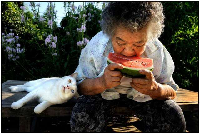 Grandmother-and-Her-Cat-2