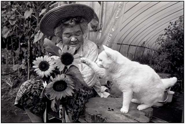 Grandmother-and-Her-Cat-5