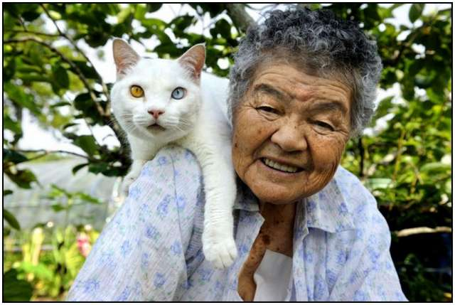 Grandmother-and-Her-Cat-6