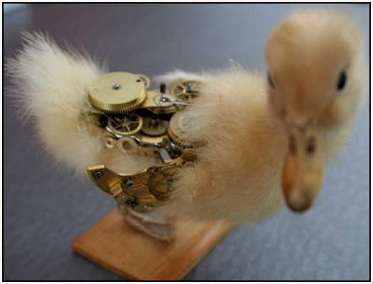 Steampunk-Taxidermy-by-Lisa-Black-10