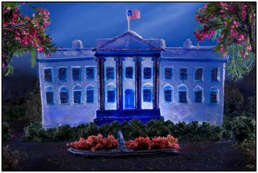 The-White-House-3